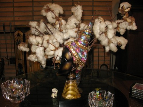 Aunty Kathy's Mississippi cotton