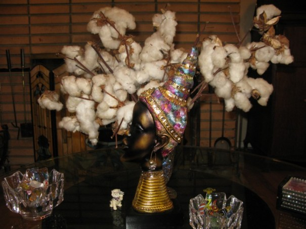 Aunty Kathy's Mississippi cotton