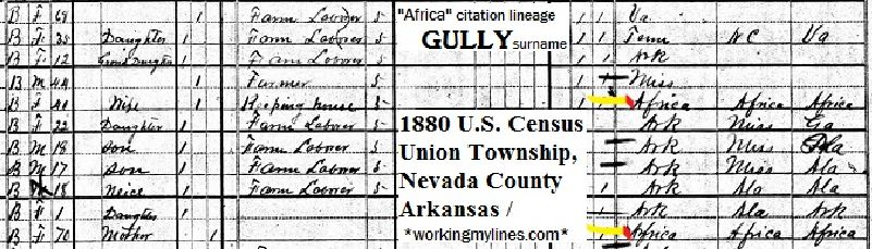 clip_GULLY_U.S.1880Census
